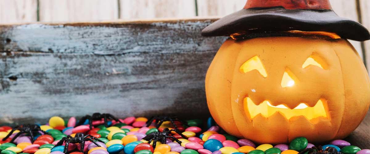 Calabazas, imprescindibles para tu decoración en Halloween