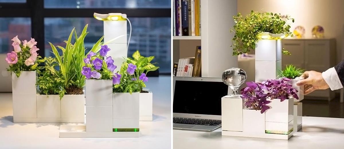 Decora tu casa con un smart planter 2