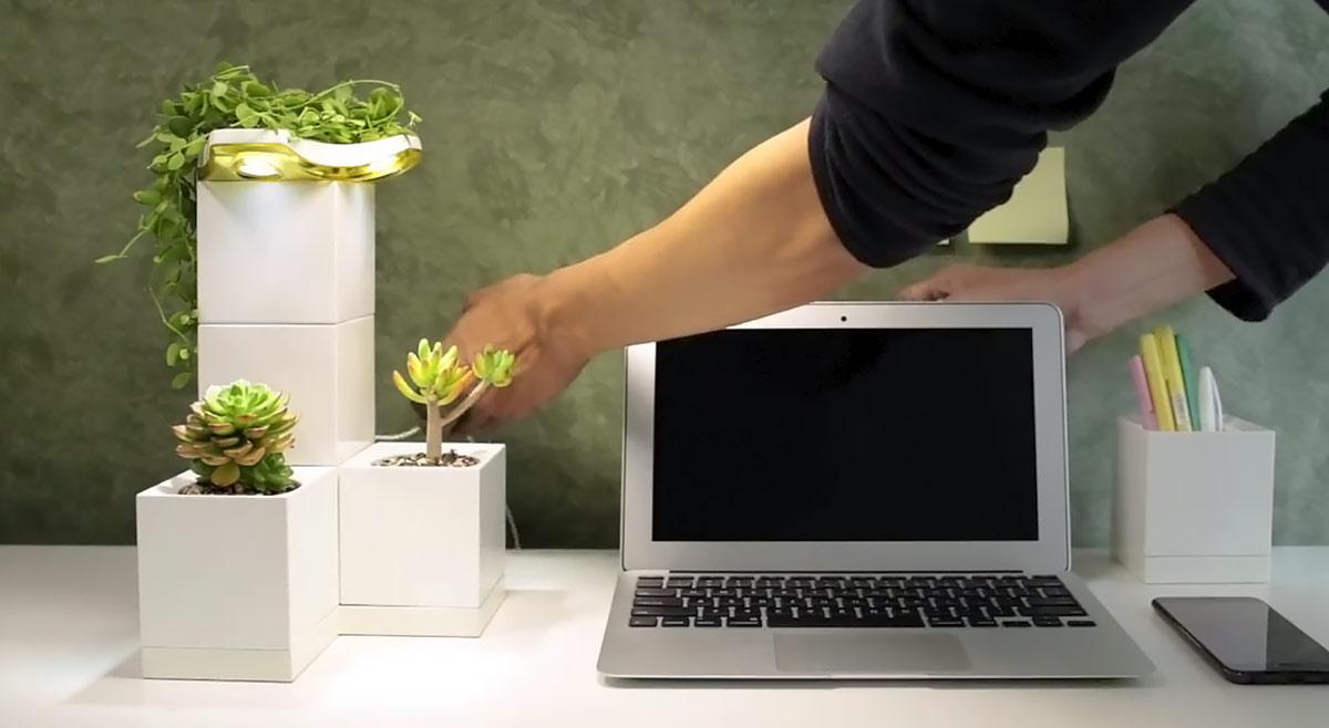 Decora tu casa con un smart planter 3