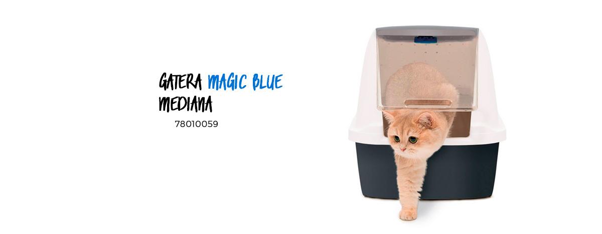 consejos para mejorar la higiene de tu gato 1