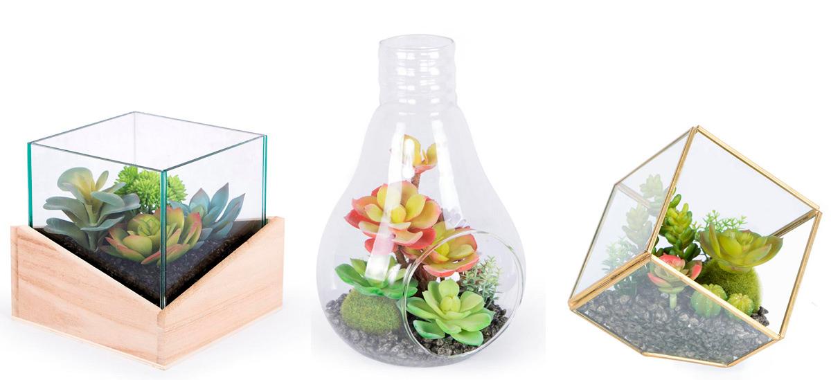 Consigue un toque especial en tu casa con terrarios decorativos